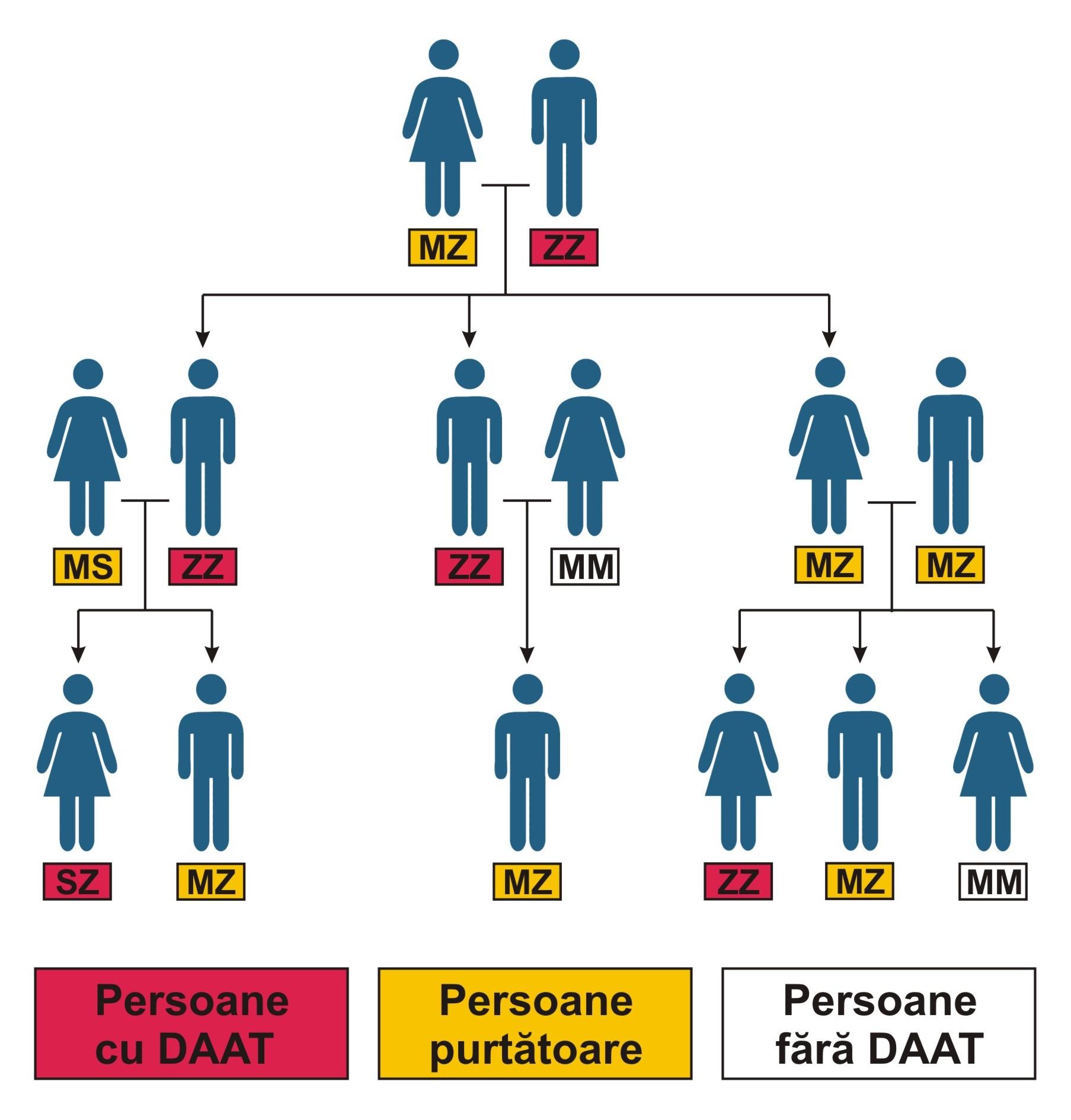 Cine trebuie testat în familie